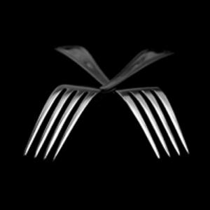North-Forks